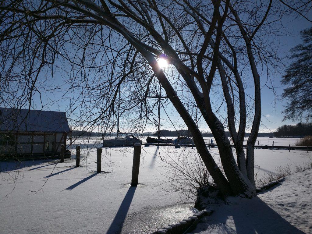 Segelyachten im Eis am winterlichen Scharmützelsee