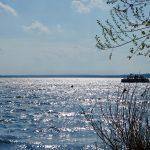 Hausboot auf dem sonnigen Scharmützelsee
